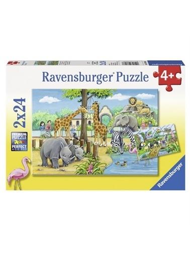Ravensburger Puzzle 2 x 24 Parça Zoo 078066 Renkli